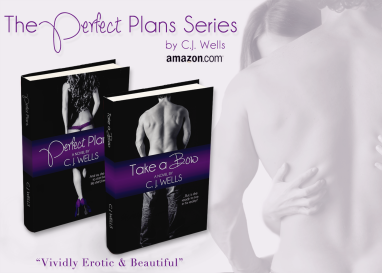 The Perfect Plans Series